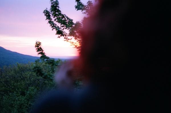 laurawoodstucklight